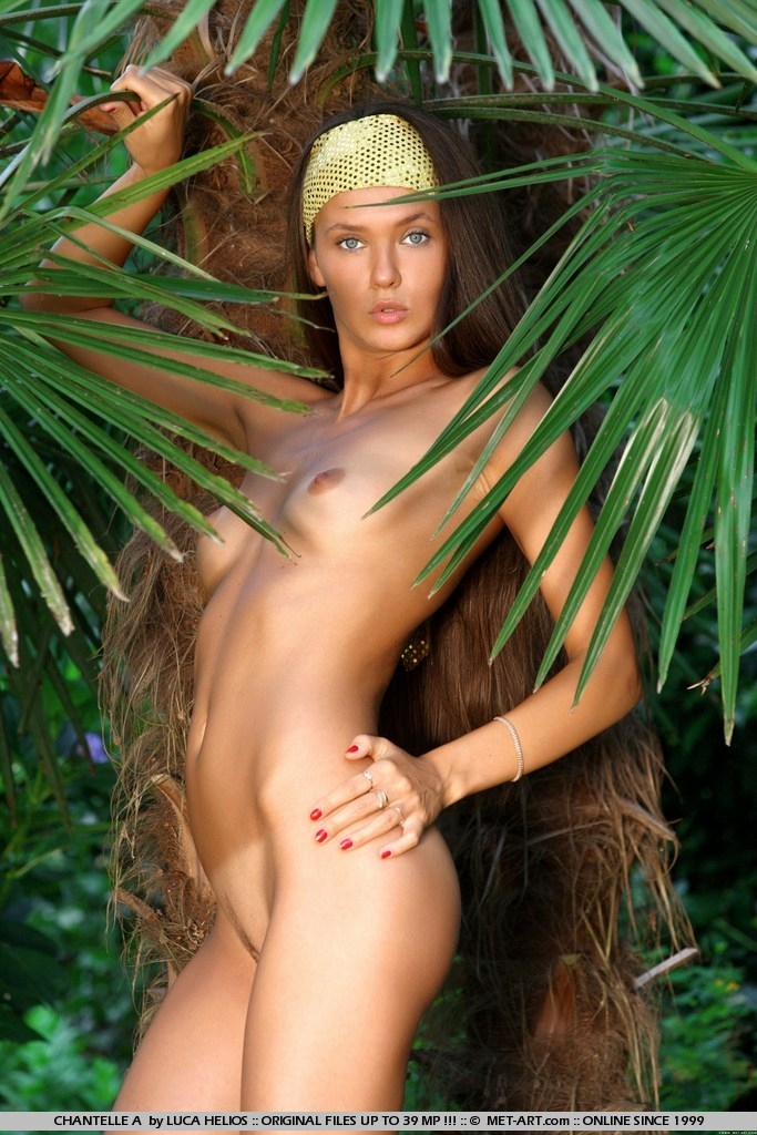 Photos Nude Jungle Girl